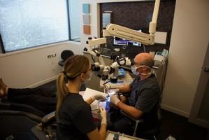 Working Endodontist